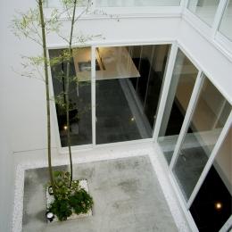 練馬の家 (中庭)