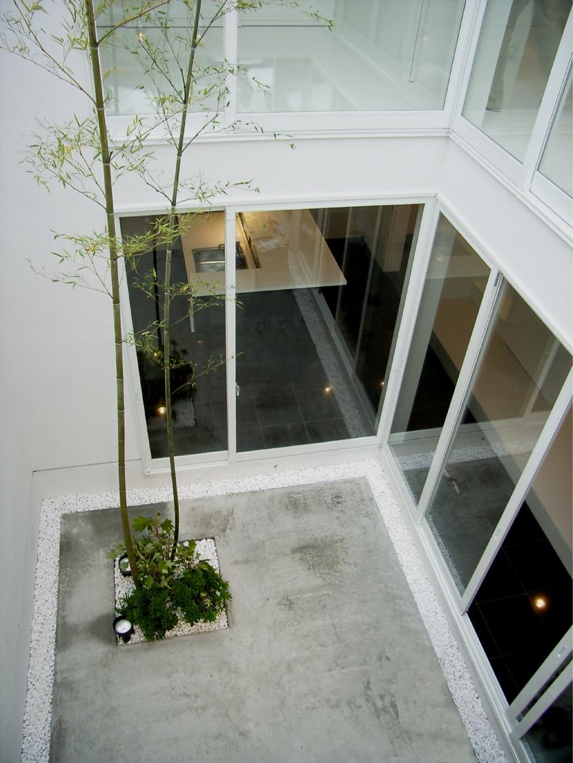 練馬の家の写真 中庭