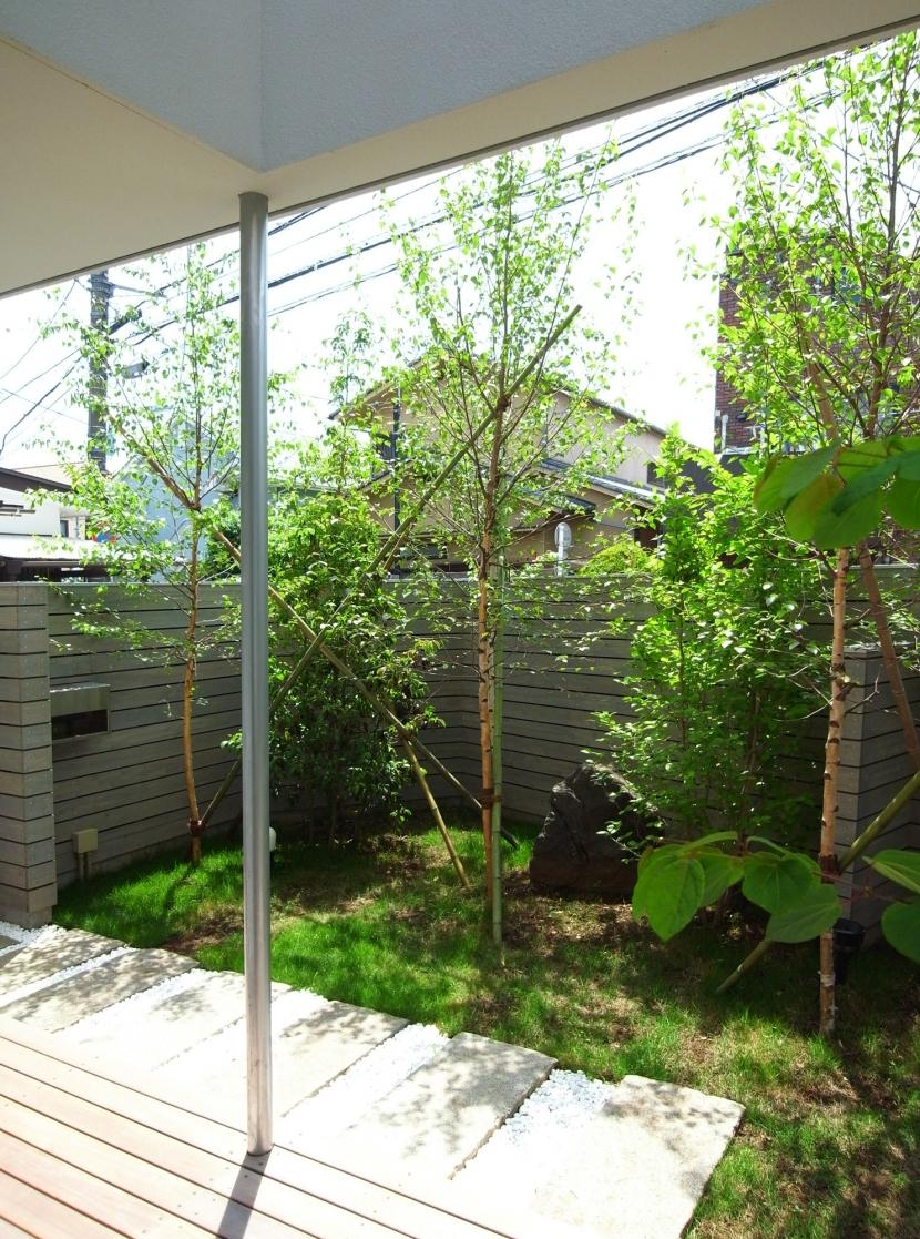 永福町の家の部屋 テラス・庭
