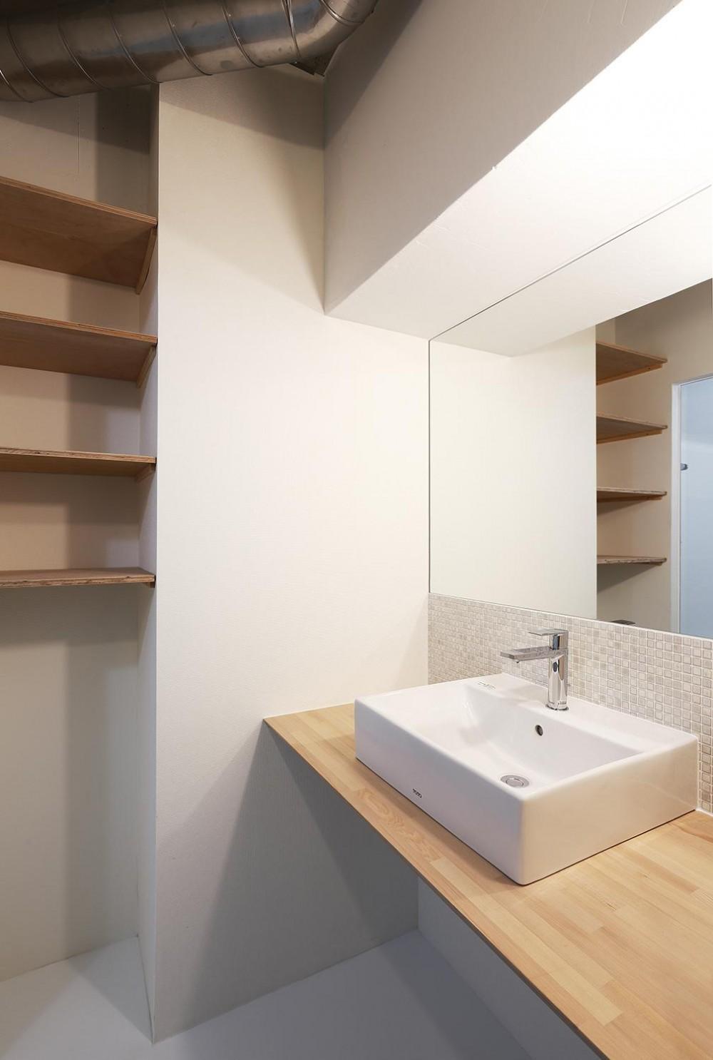 猿江の住宅 (シンプルな洗面室)