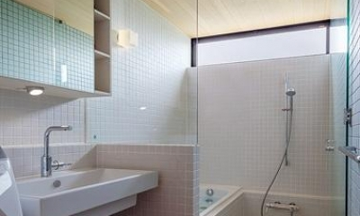 緩斜面の家 [2013] (洗面所とバスルーム)