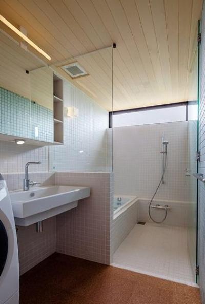 洗面所とバスルーム (緩斜面の家 [2013])