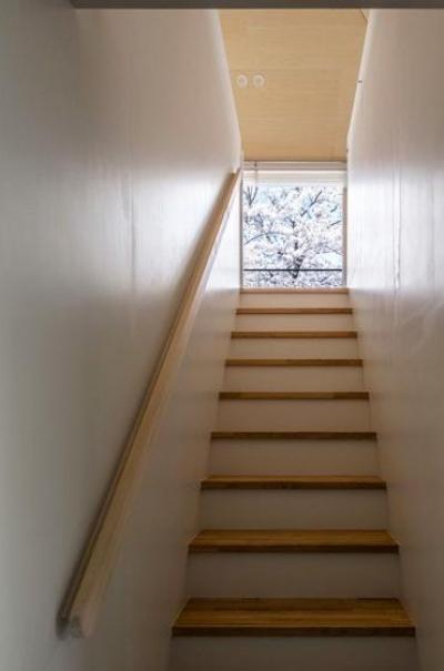 隅切りの家 [2013] (桜が見える階段)