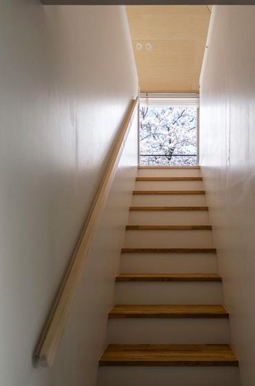 隅切りの家 [2013]の写真 桜が見える階段