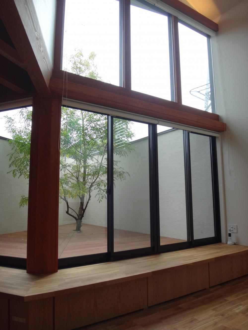 鏡島ベース (リビング・ダイニングから中庭を見る)