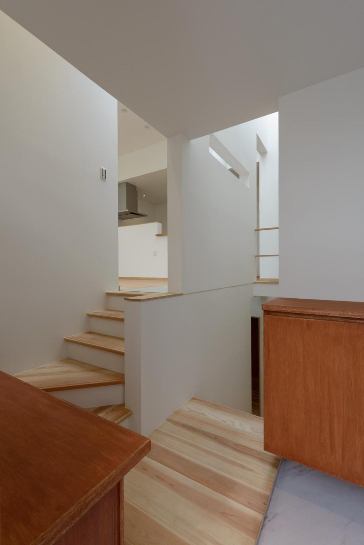 Light Well Box/Hideさんのスキップフロアー住宅 (玄関)