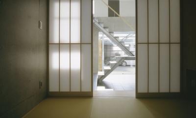 大林の家 (客間・和室ー玄関土間とストリップ階段を見る)