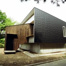 杉板と金属板による外壁 (塩原の週末の家)