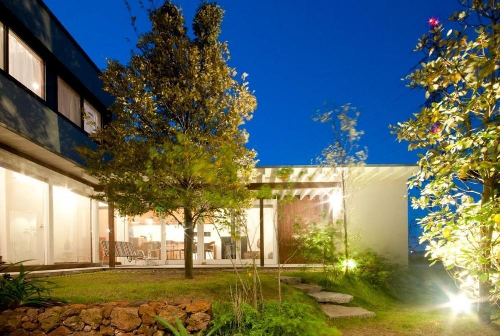 安八町の家 (夜の中庭2)