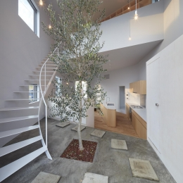 大口の家 (玄関にあるシンボルツリー)