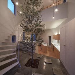 大口の家 (玄関にあるシンボルツリー-ライトアップ)