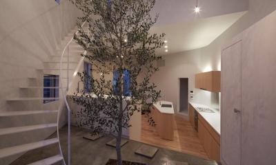 玄関にあるシンボルツリー-ライトアップ|大口の家 / 五角形の曲線を持つデザイナーのアトリエハウス