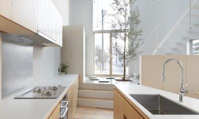 大口の家 / 五角形の曲線を持つデザイナーのアトリエハウス (キッチン)