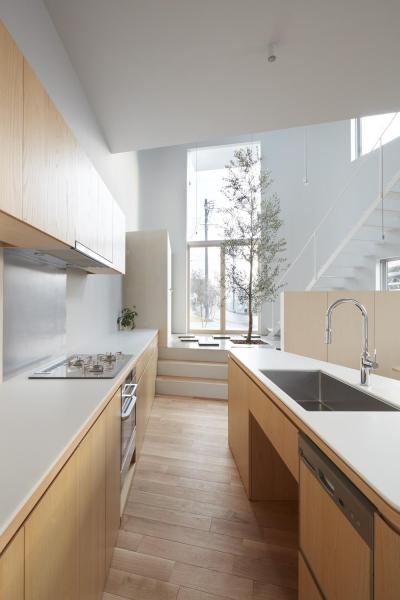 キッチン (大口の家)