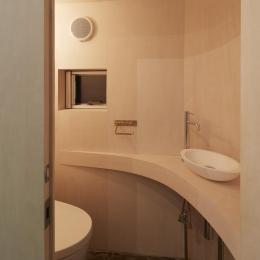 大口の家 (トイレ)
