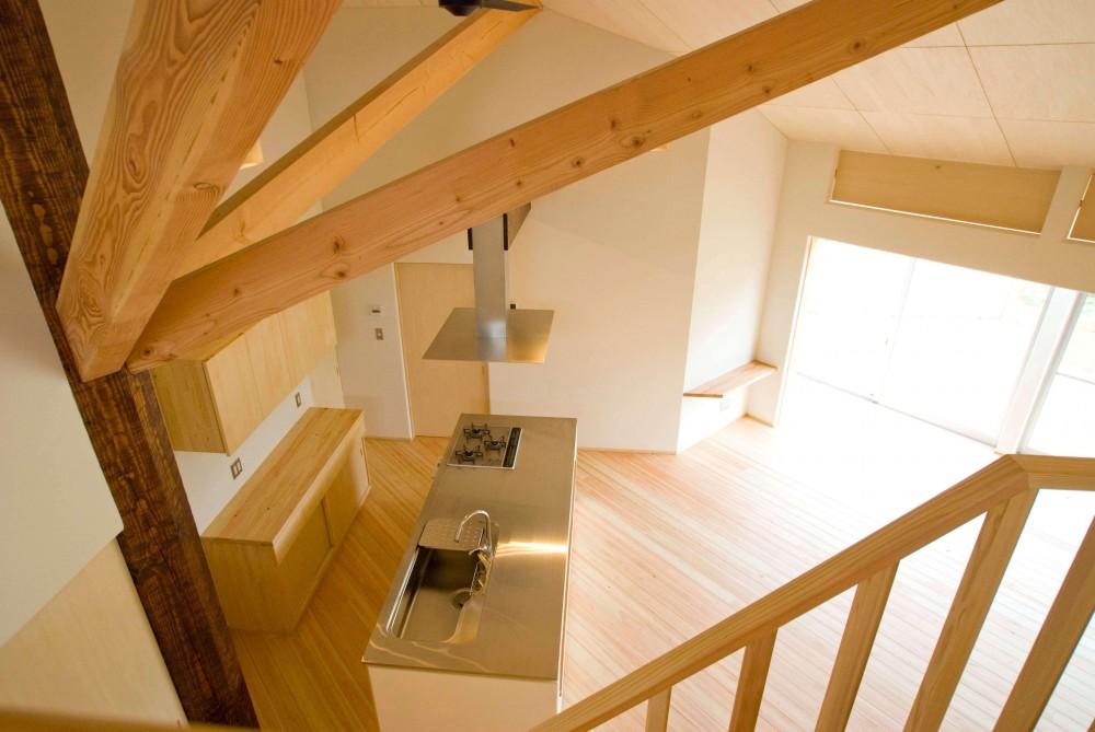 サンルームのあるUMSTの舎 (階段)