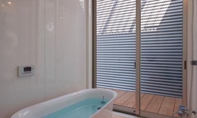 水庭の家 (浴室からバスコートを見る)