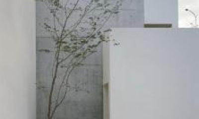 南春日丘の家 (玄関アプローチ)