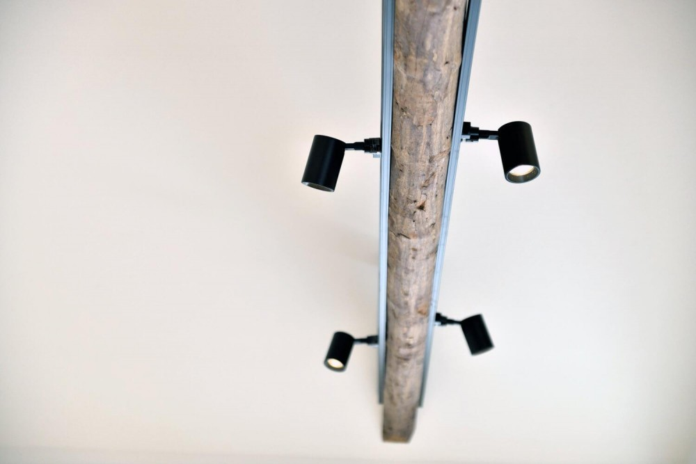 木造平屋を住み継ぐ。経年のぬくもりを生かした戸建てエコリノベ (梁に配したライティングレール)
