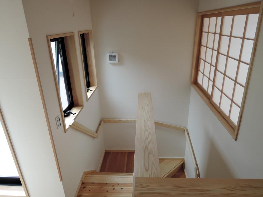 密集地の明るい機能的な家 (階段)