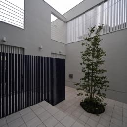 谷津の家 (ライトコート)