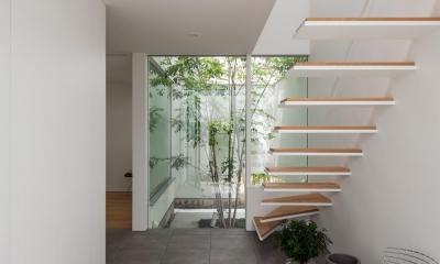 立体市松壁の家 (玄関)