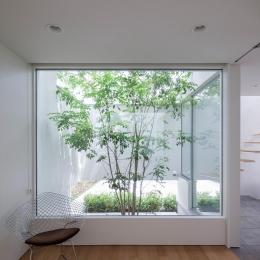 立体市松壁の家 (坪庭)