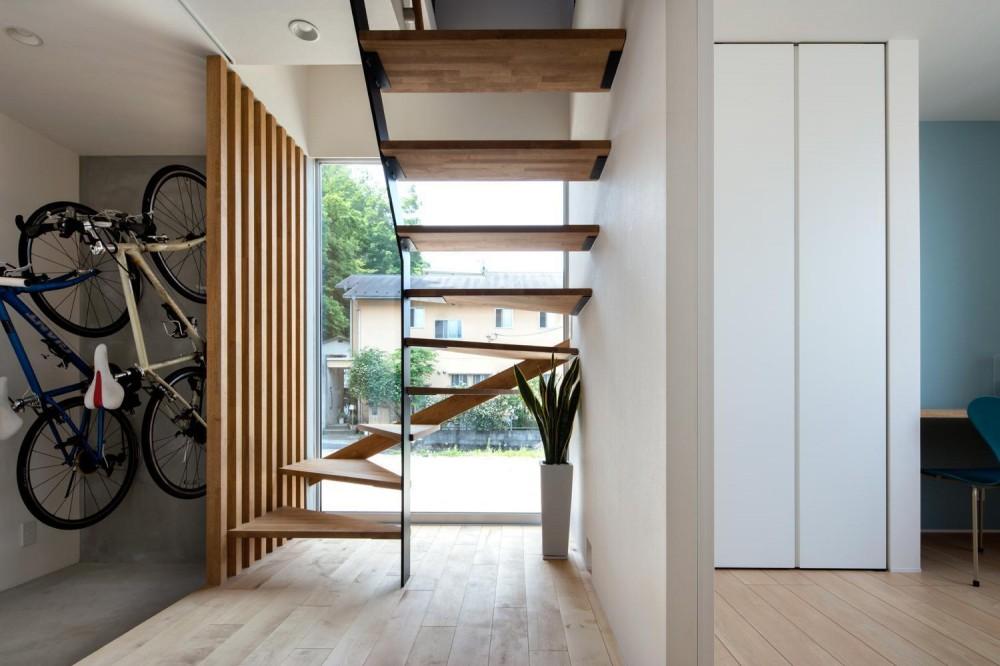 猫昇の家 (玄関ホール)