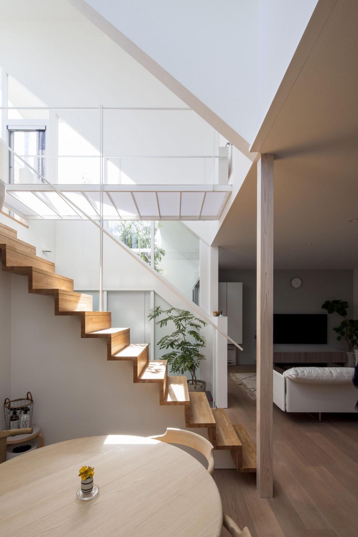 光が通り抜ける家 (階段とブリッジ)