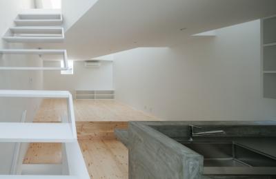 玉津の住宅 / House in Tamatsu (2階LDK(北東より南西を見る))