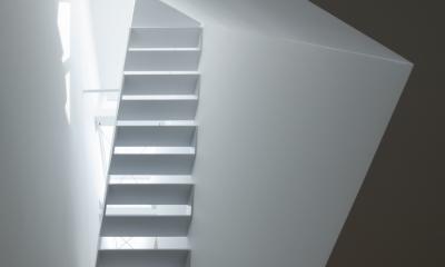玉津の住宅 / House in Tamatsu (2階リビング上部吹抜け見上げ)