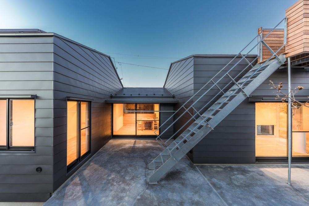 『ウィークリンク』6つの小屋が東西につながり、家族の多様な居場所をつくる家 (夕景)