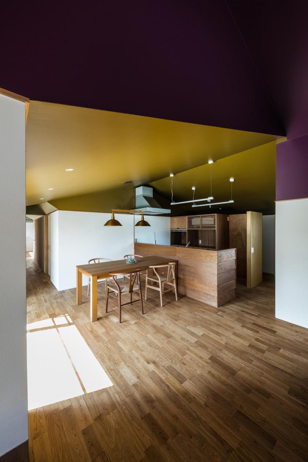 『ウィークリンク』6つの小屋が東西につながり、家族の多様な居場所をつくる家 (ダイニングキッチン)