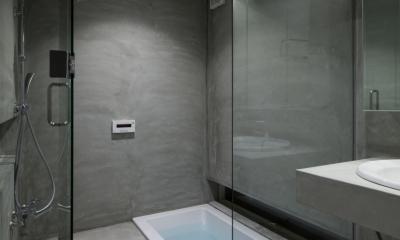 玉津の住宅 / House in Tamatsu (1階浴室)