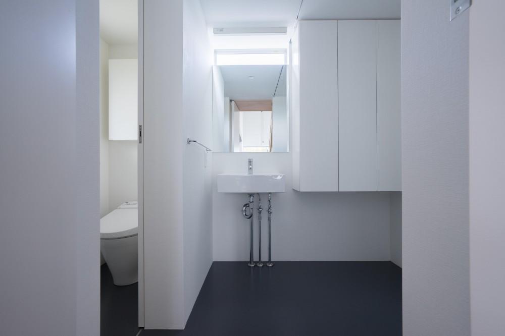 『グロット』スキップフロアでつながる一体的内部空間 (洗面所)