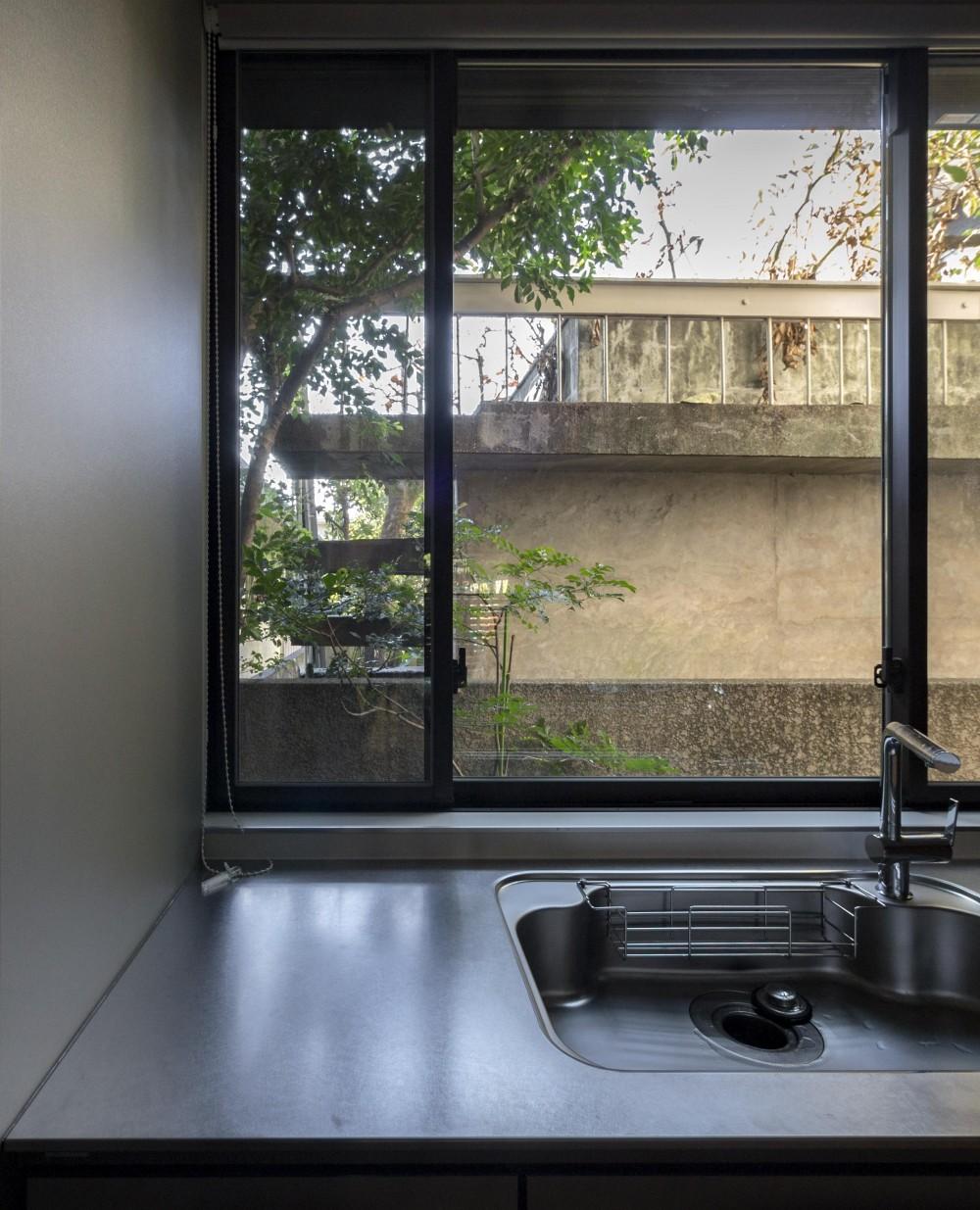 世代交代した家 となり (緑の借景を取り入れたキッチンの窓)