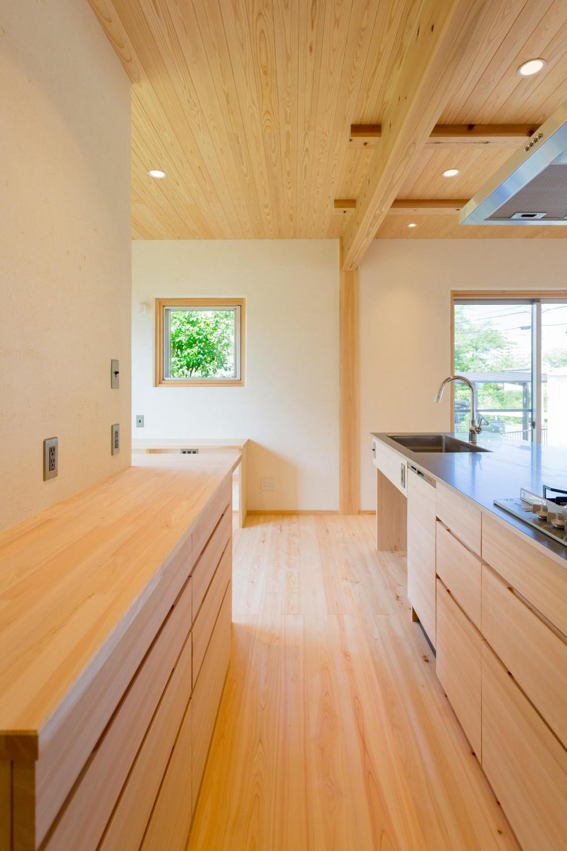 双子のibushiの舎 (キッチンカウンター)
