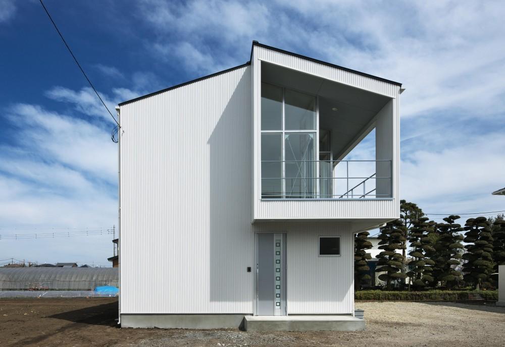 大田原の住宅 (外観)