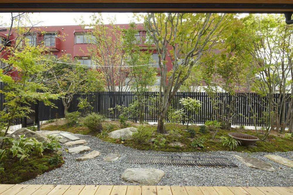 香住ケ丘の家 (庭)
