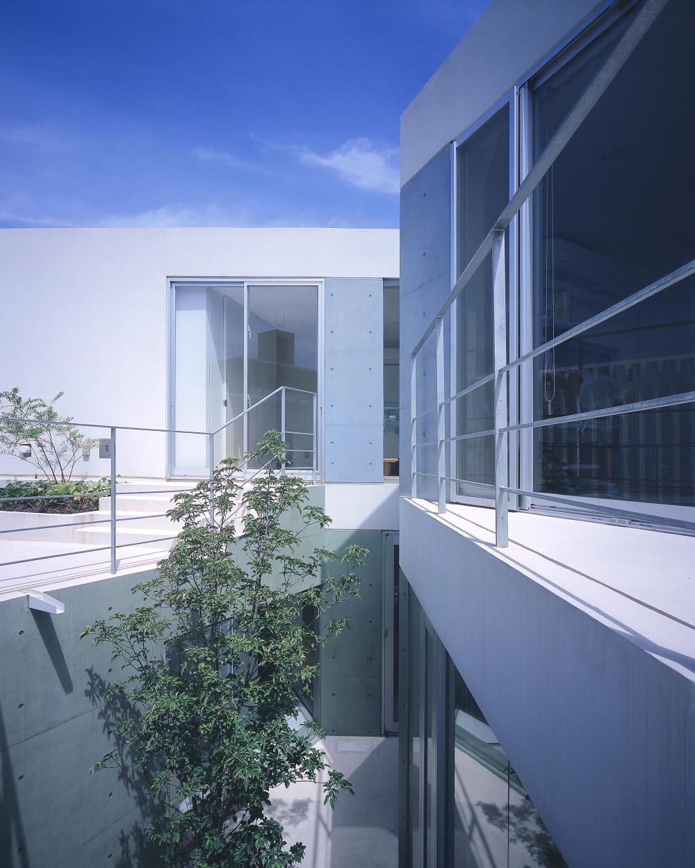 宇宿の住宅 (中庭・階段より寝室方向を見る)