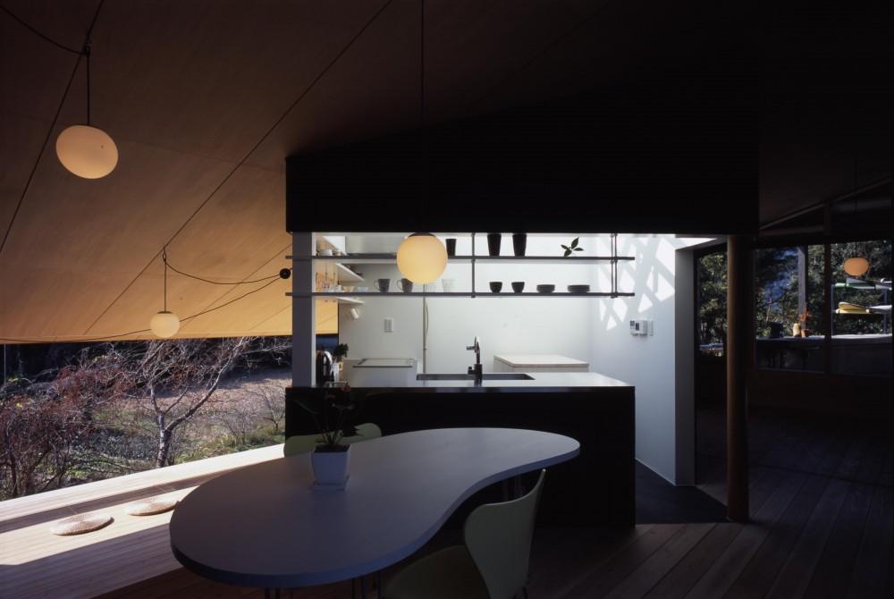 ミカン畑に浮く縁側のある家 (中庭のような明るいキッチン)