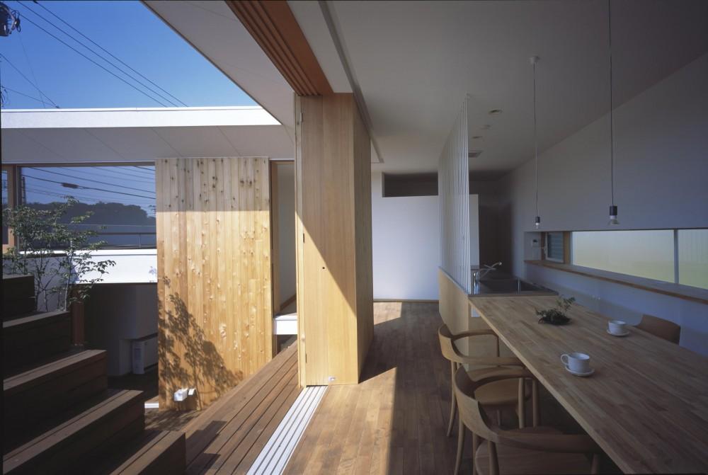 階段テラスが中庭と屋上をつなぐ家 (中庭と屋上へと続くダイニングキッチン)