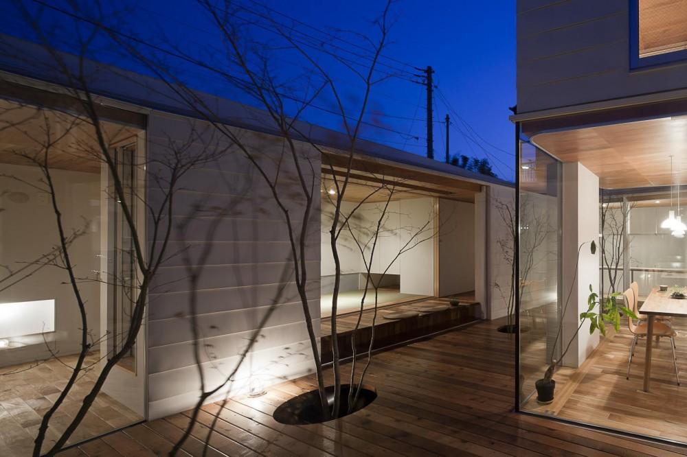 開放的な中庭デッキを包み込む平屋の家 (夕景に溶け込む屋内と中庭)