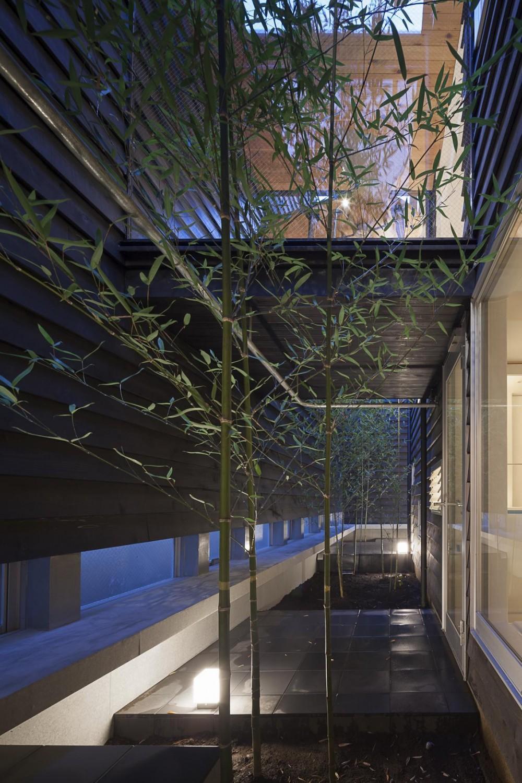 竹林の中庭 (階段が庭と居場所をつなぐ狭小住宅)