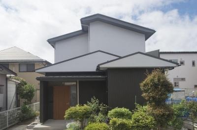 天野の家/リノベーション (道路から建物をみる)
