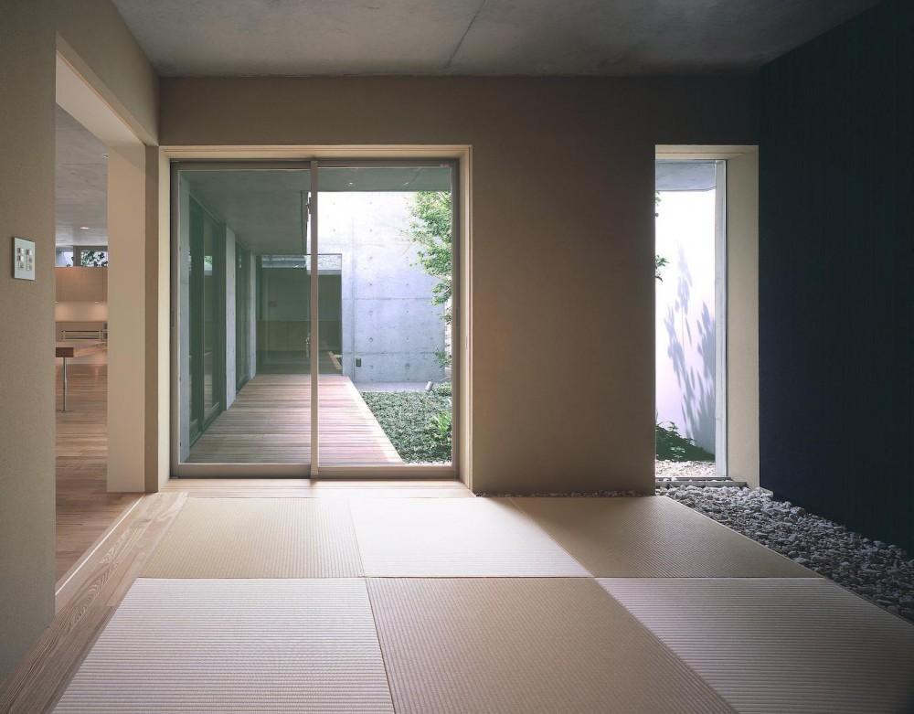 東谷山の住宅 II ((親世帯)和室より中庭方向を見る)