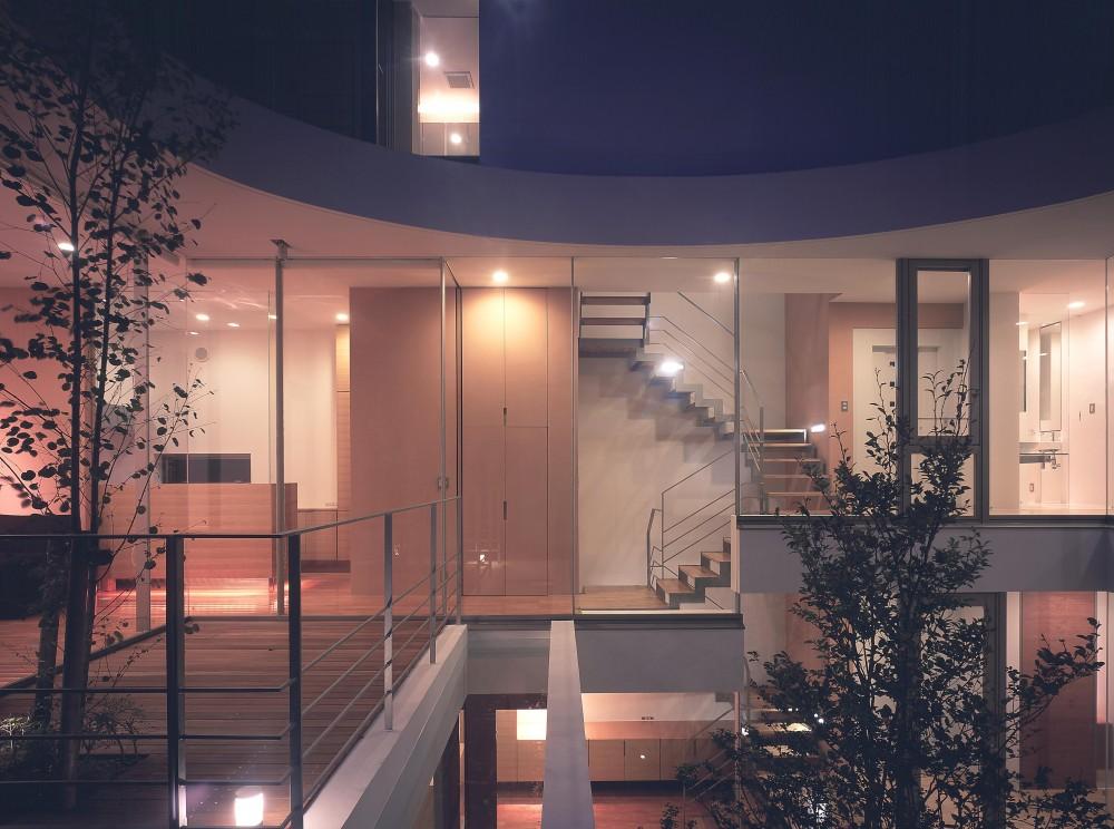 薬師の住宅 (中庭側夜景)
