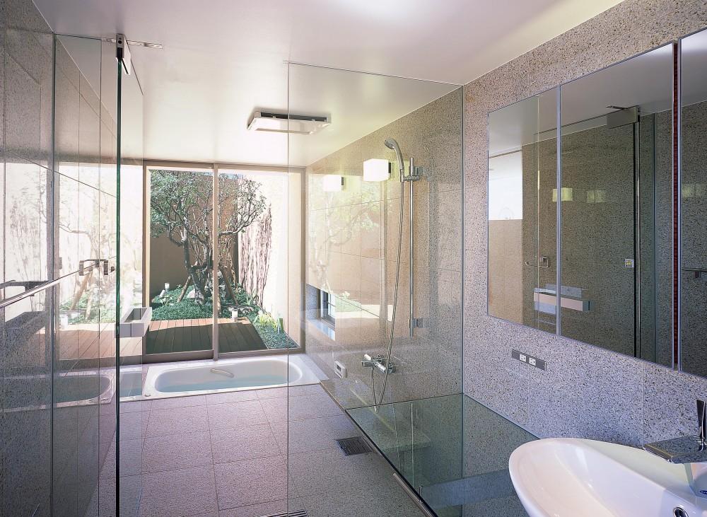 薬師の住宅 (3階洗面所・浴室よりバスコートを見る)