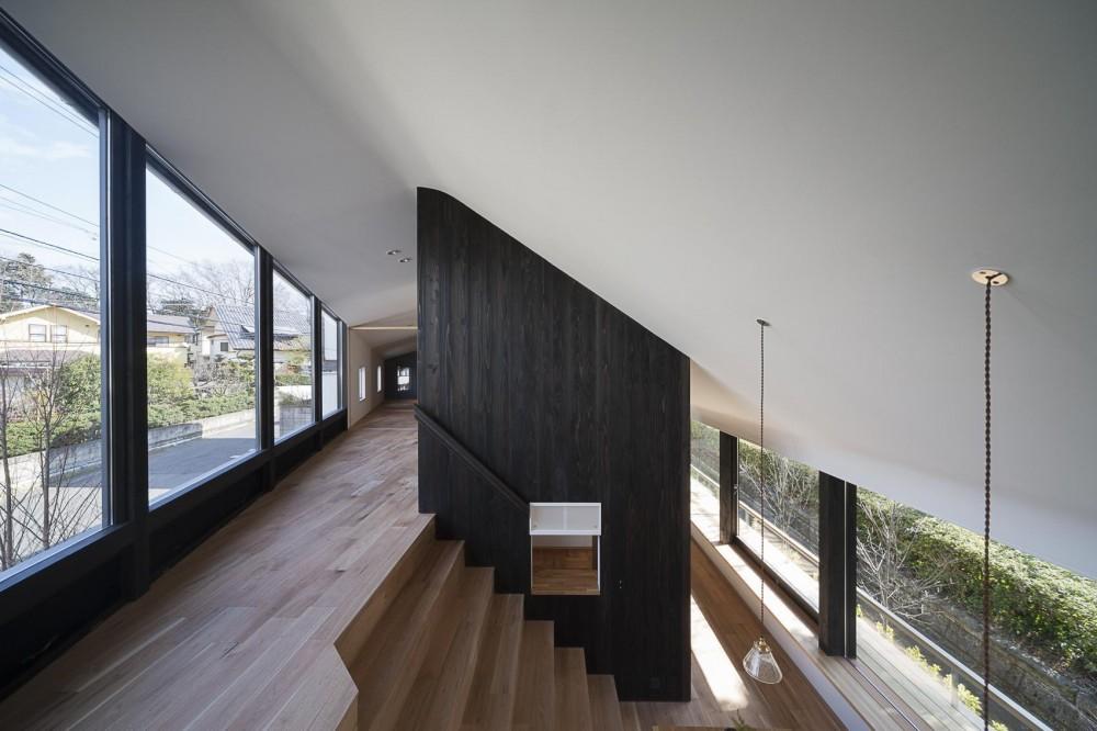 緑道に開かれた深庇と縁台のある家 (階段状のリビングとダイニング)