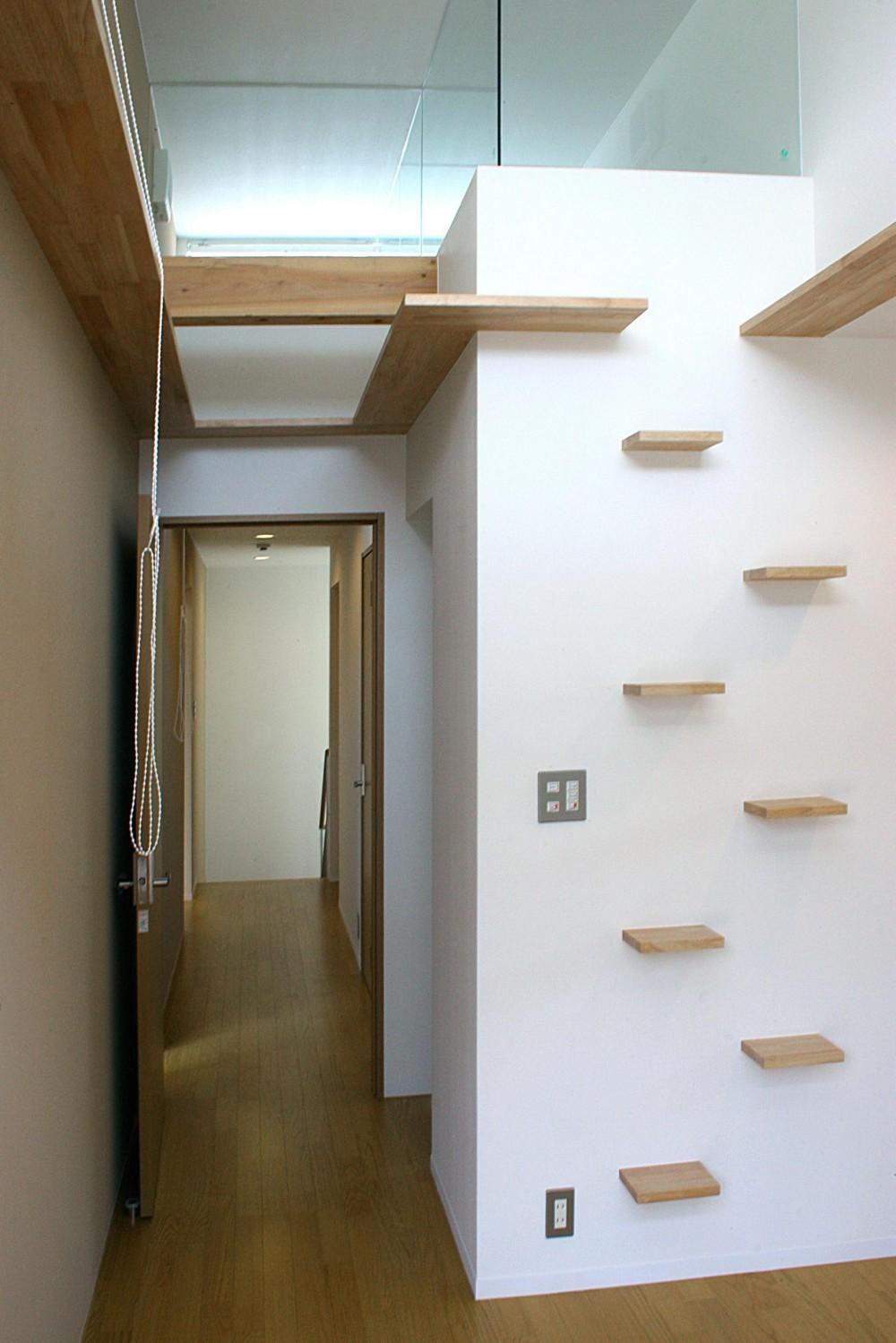 薬師の住宅 ((親世帯)寝室の猫ステップ)